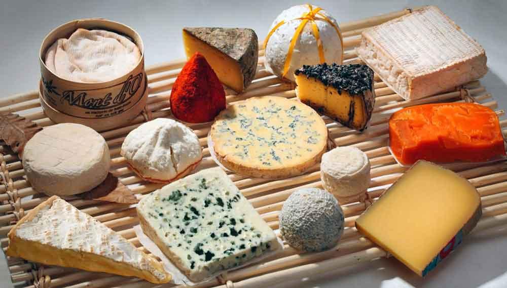 сыроварня, бизнес сыроварня, как открыть сыроварню