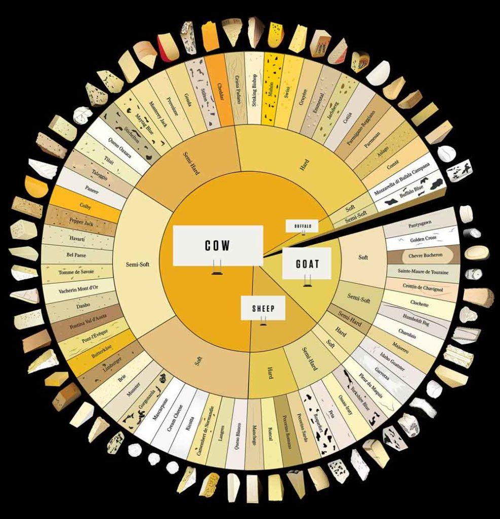 Виды сыров, бизнес сыроварня, бизнес-план сыроварни