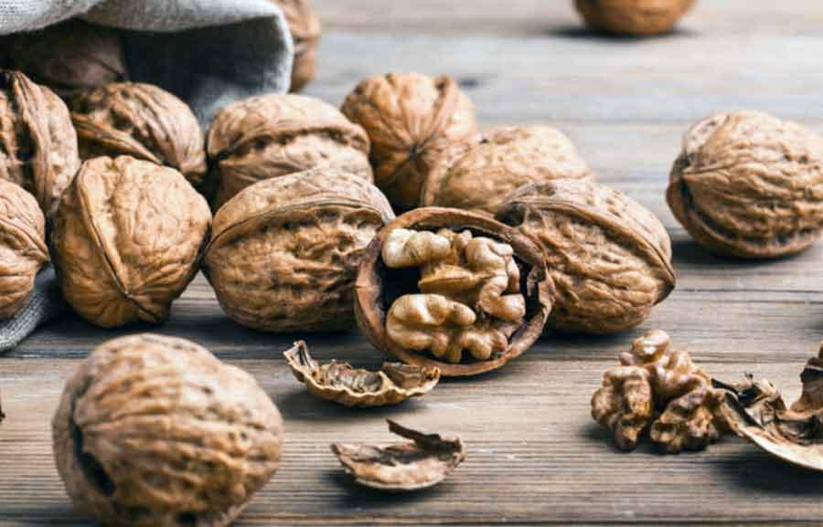 Бизнес на грецких орехах, выращивание грецкого ореха как бизнес, грецкий орех бизнес план, бизнес план орехового сада